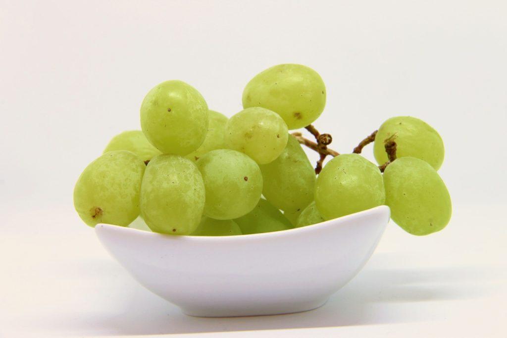 Weintrauben gefährlich für Hunde