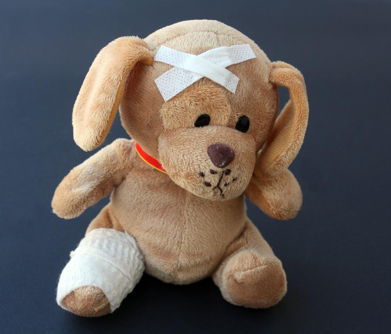 hunderversicherung